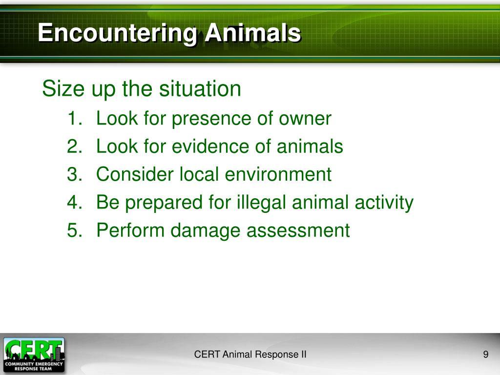 Encountering Animals