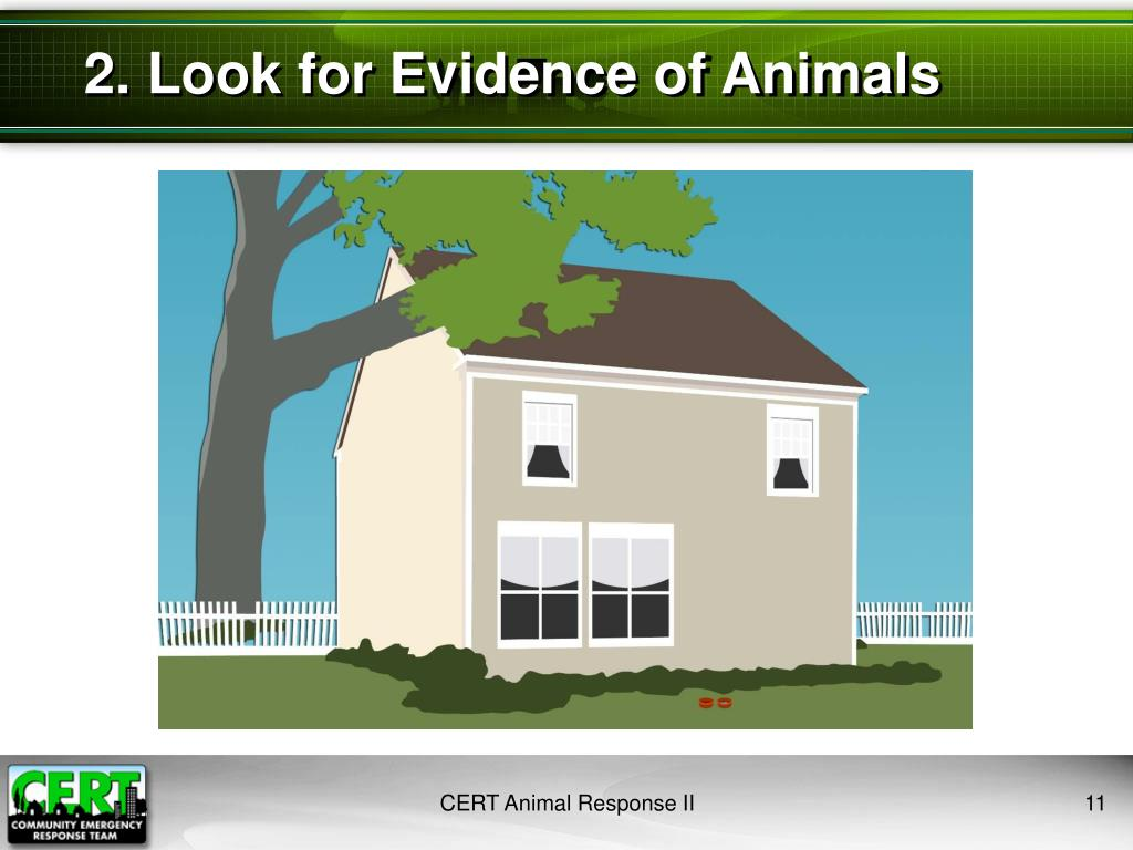 2. Look for Evidence of Animals