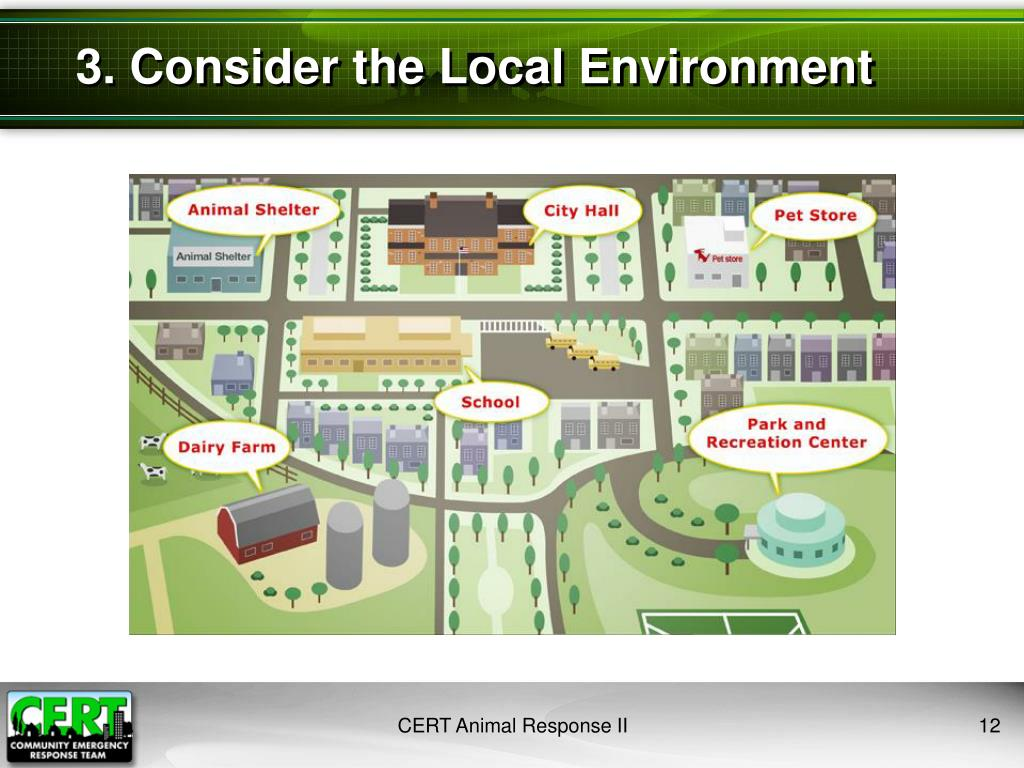 3. Consider the Local Environment