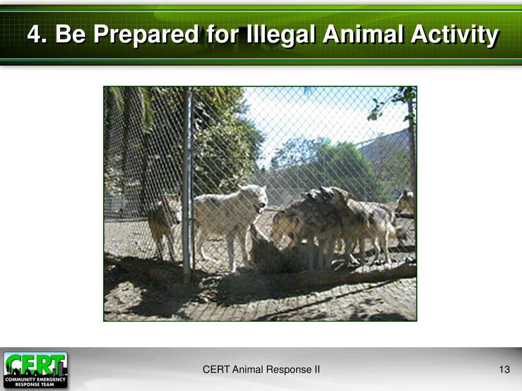 4. Be Prepared for Illegal Animal Activity