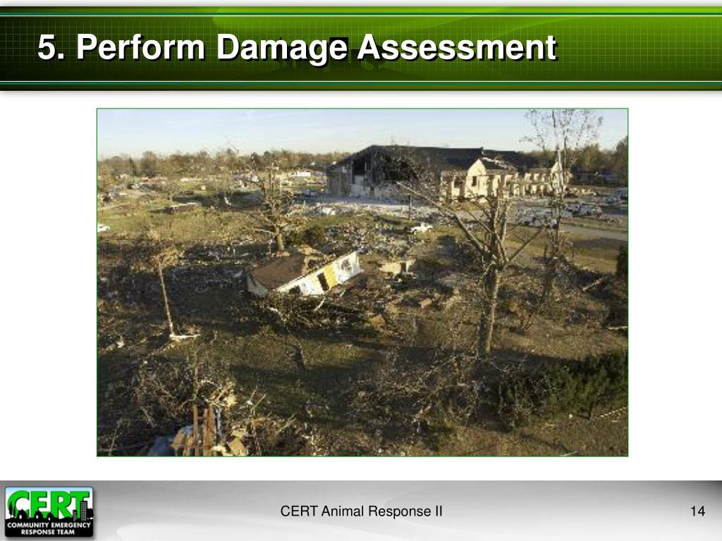 5. Perform Damage Assessment