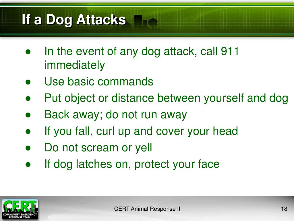 If a Dog Attacks