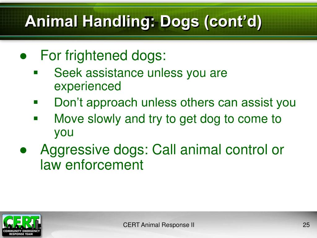 Animal Handling: Dogs (cont'd)