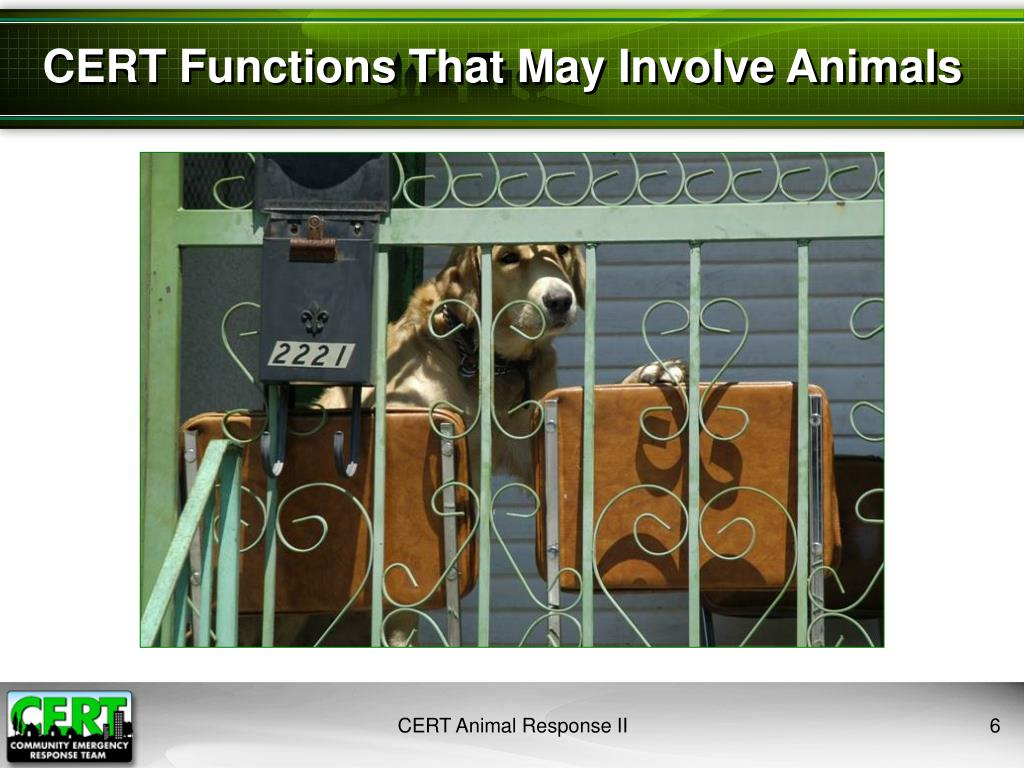 CERT Functions That May Involve Animals