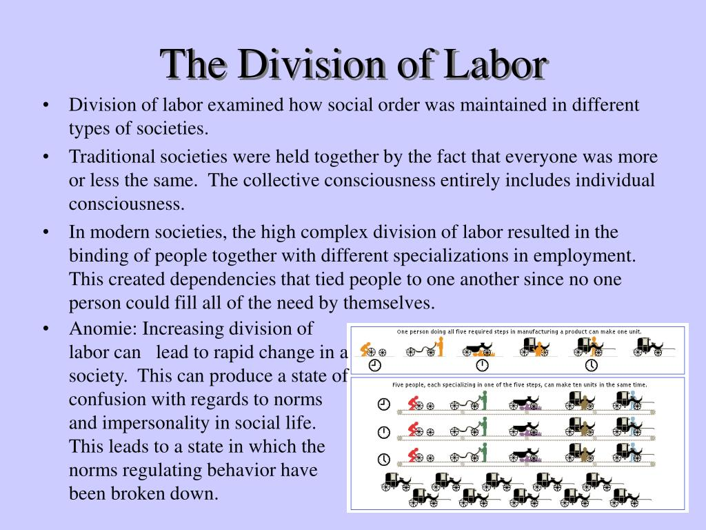 emile durkheim the division of labor in society For an analysis of biological metaphors and images in durkheim's early publications, durkheim, the division of labour, and social darwinism 31 see mj hawkins, 'traditionalism and organicism in durkheim's early writings, 1885-1983', journal of the history of the behavioral sciences 16(1980), 31-44.