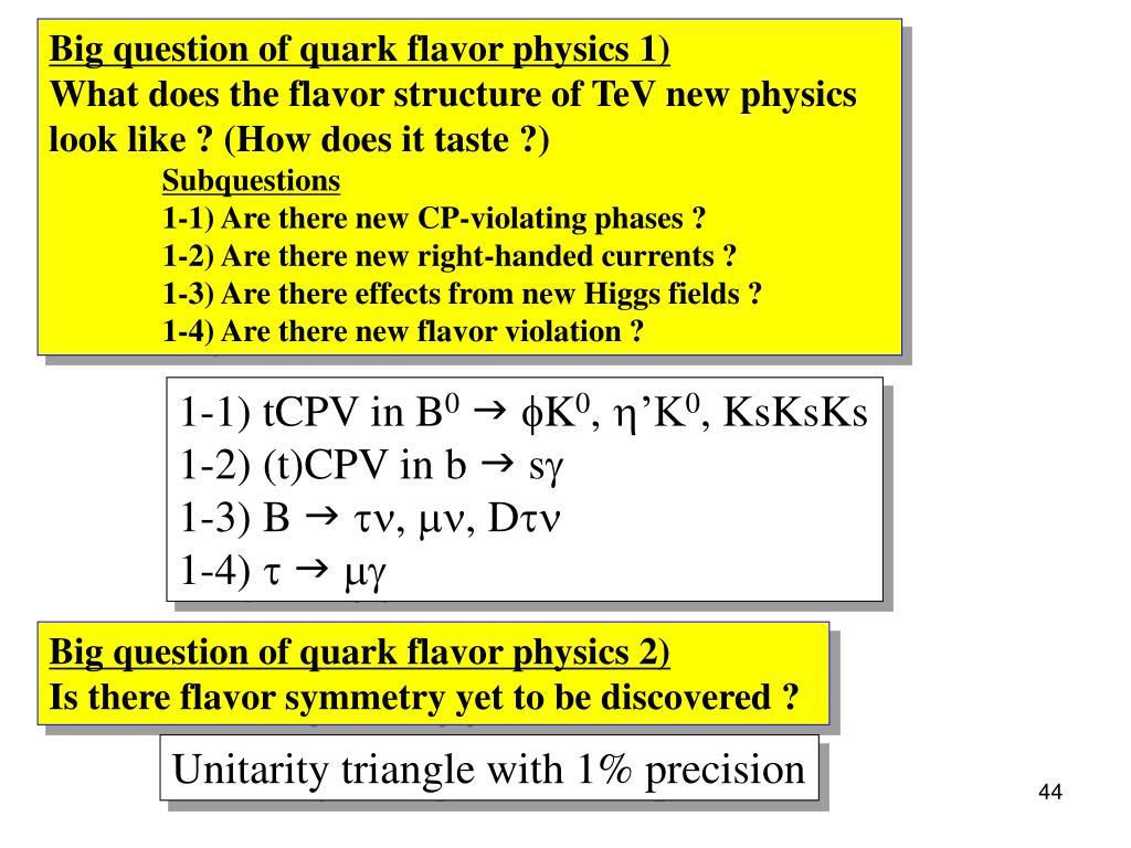 Big question of quark flavor physics 1)