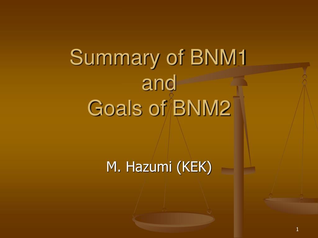 summary of bnm1 and goals of bnm2