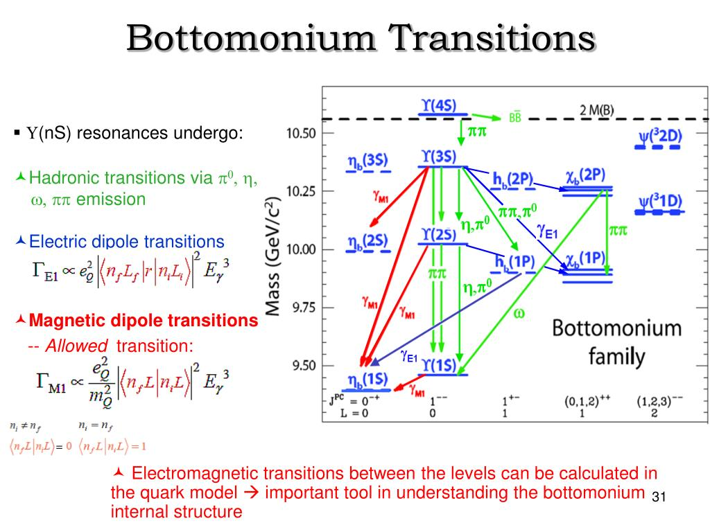 Bottomonium Transitions