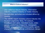 what is culture industry