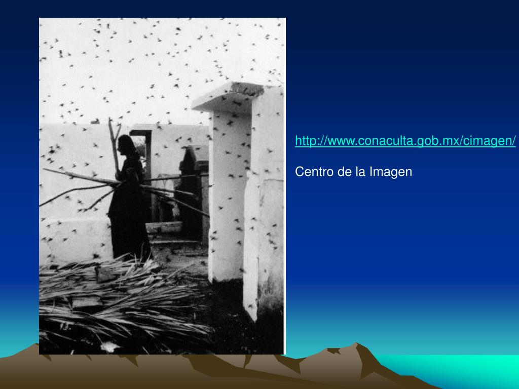 http://www.conaculta.gob.mx/cimagen/
