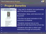 project benefits