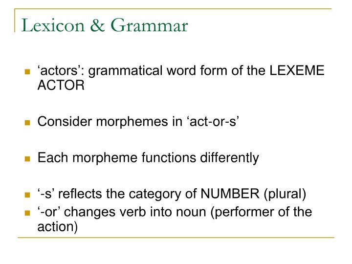 Lexicon & Grammar