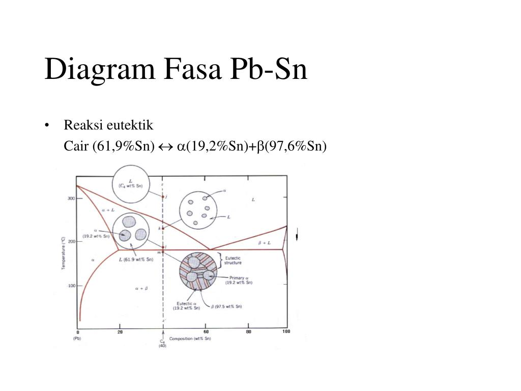 Diagram Fasa Pb-Sn