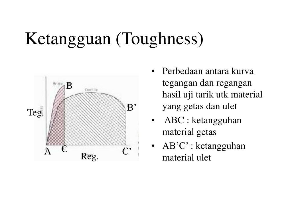 Ketangguan (Toughness)