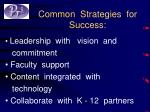 common strategies for success