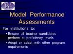 model performance assessments