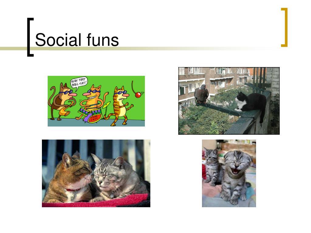 Social funs