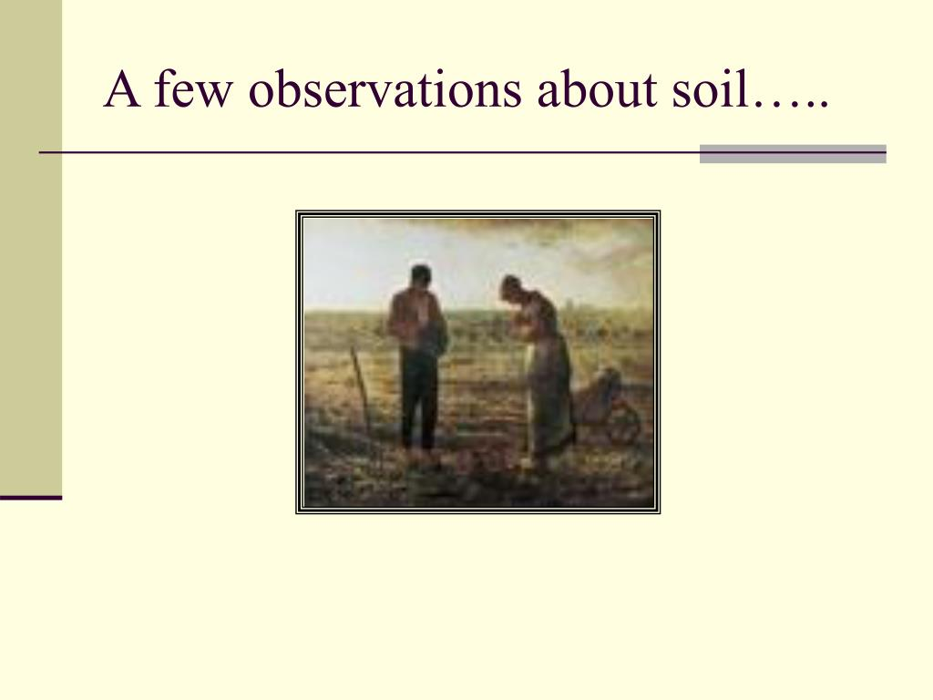 A few observations about soil…..
