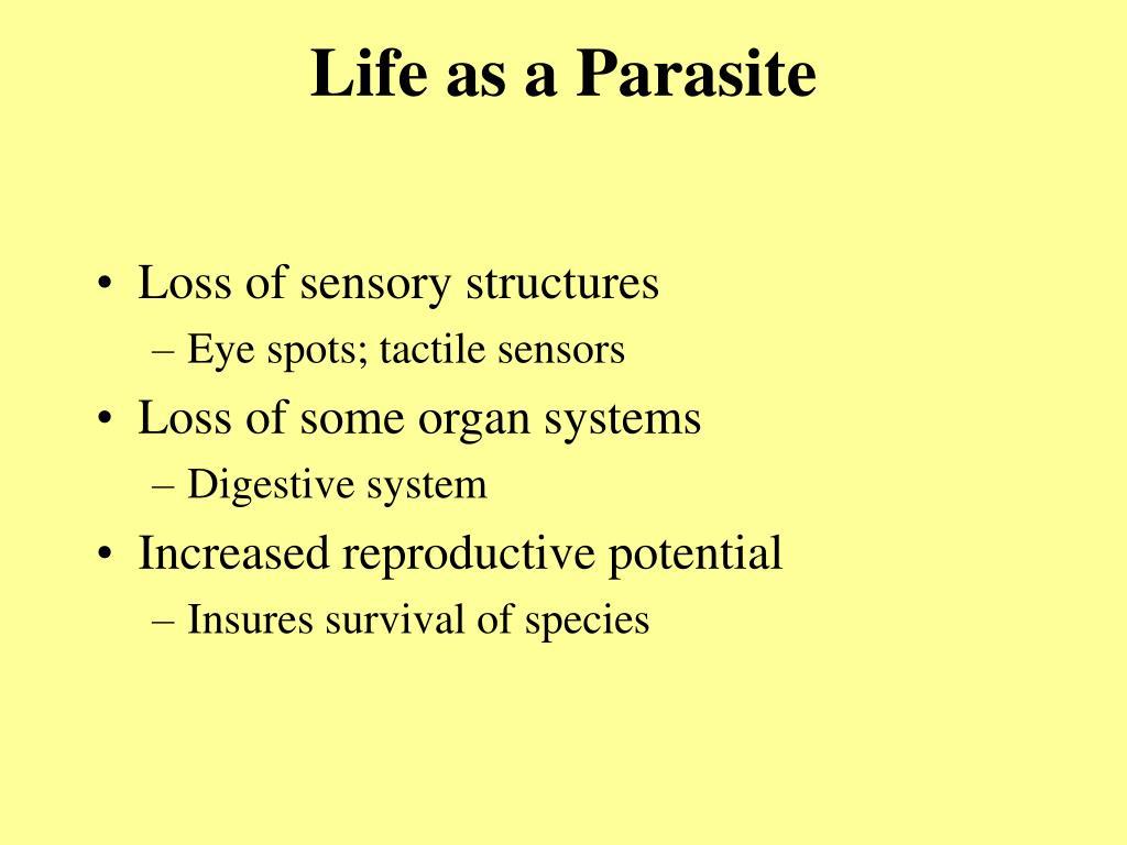 Life as a Parasite