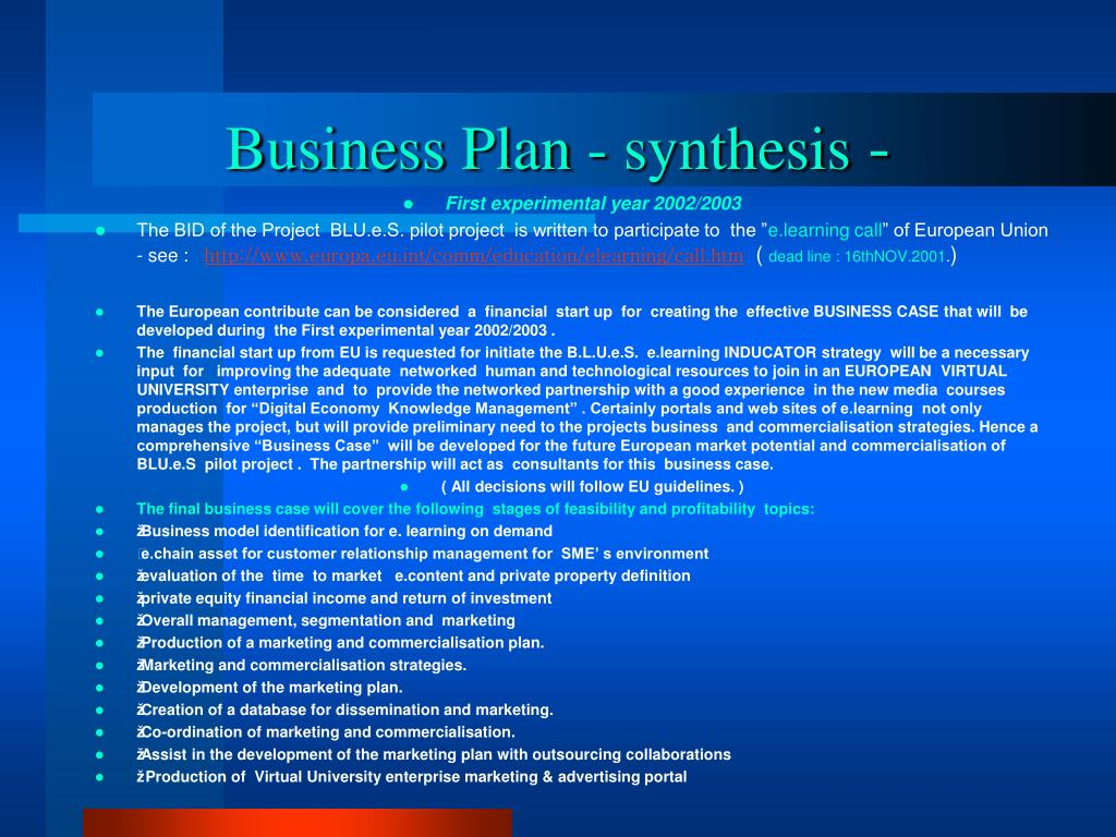Business Plan - synthesis