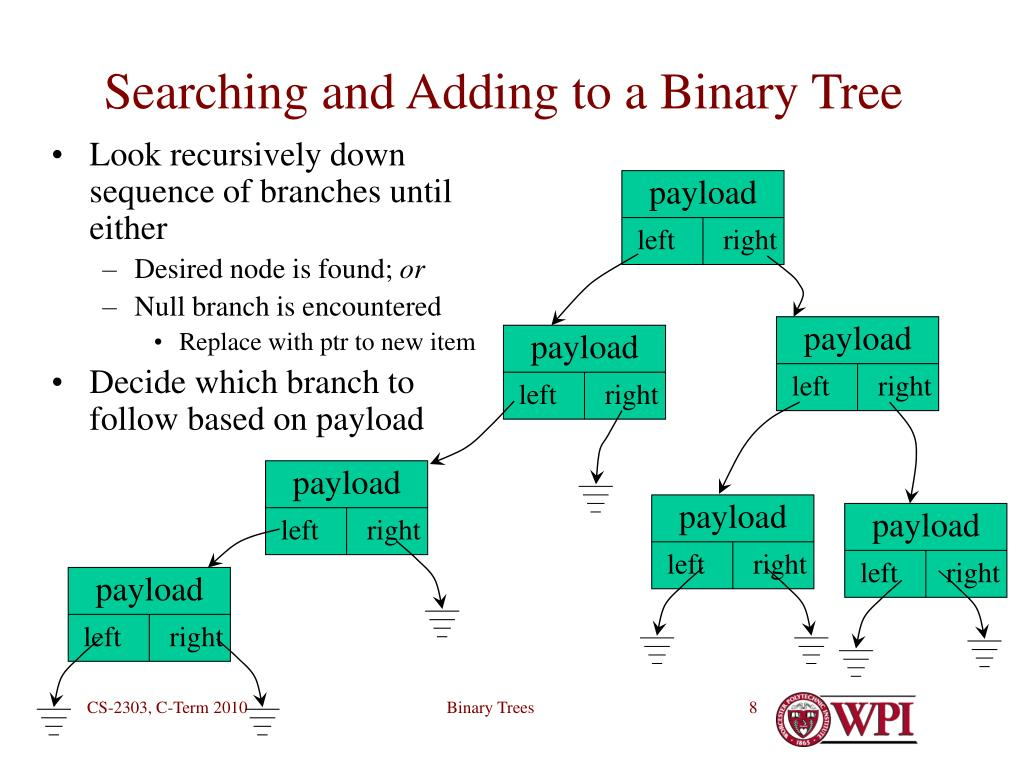 Look recursively down sequence of branches until either
