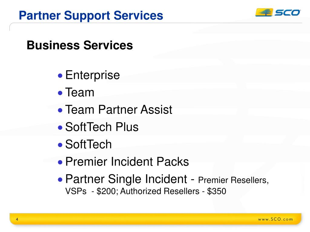 Partner Support Services