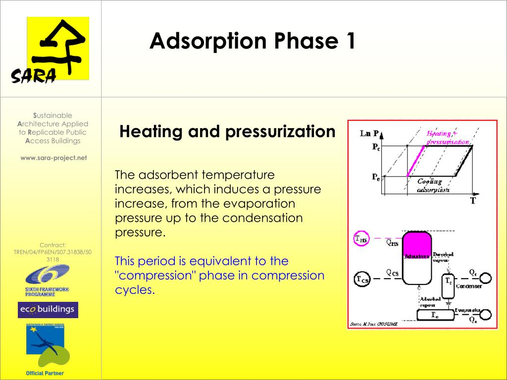 Adsorption Phase 1