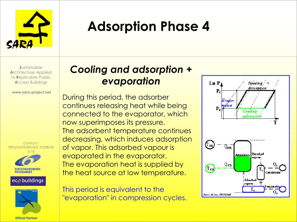Adsorption Phase 4