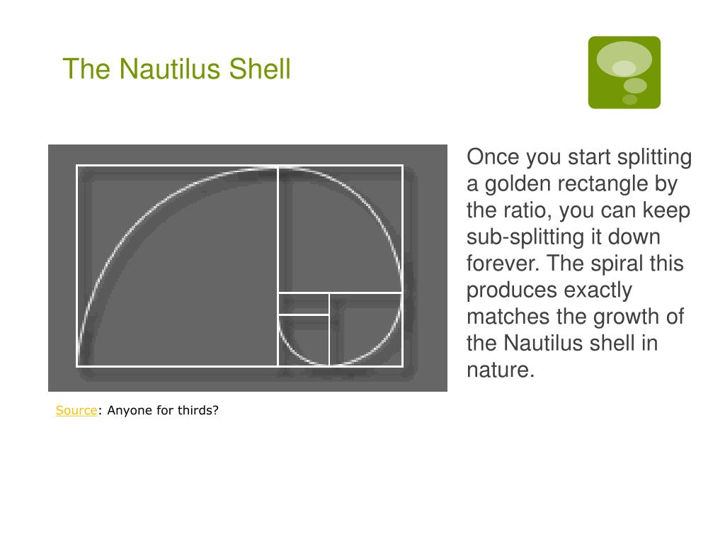 Once you start splitting a golden rectangle by the ratio, you can keep sub-splitting it down forever. The spiral this produces exactly matches the growth of the Nautilus shell in nature.