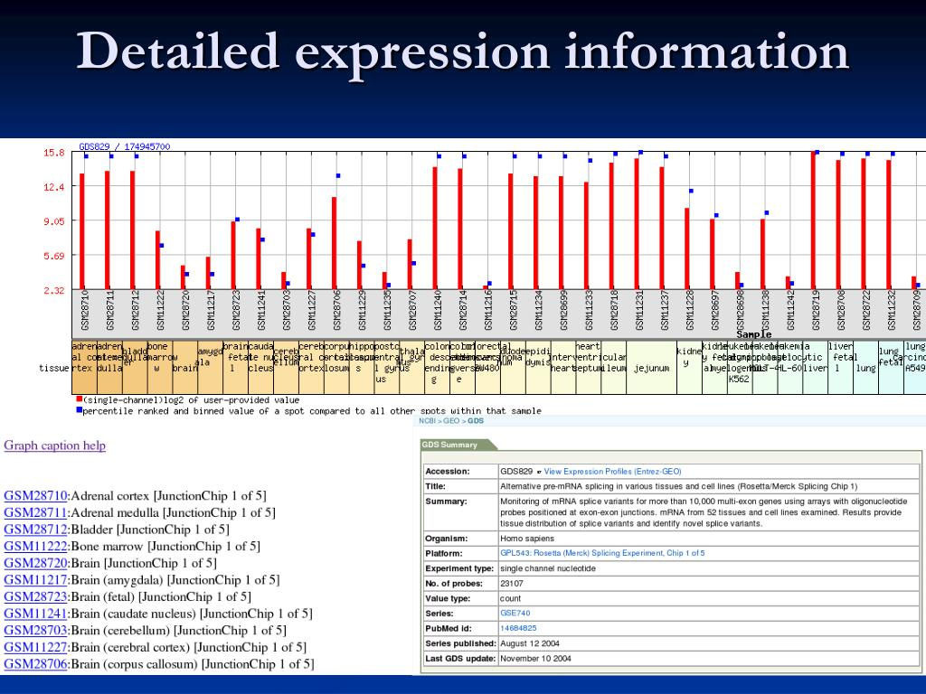 Detailed expression information