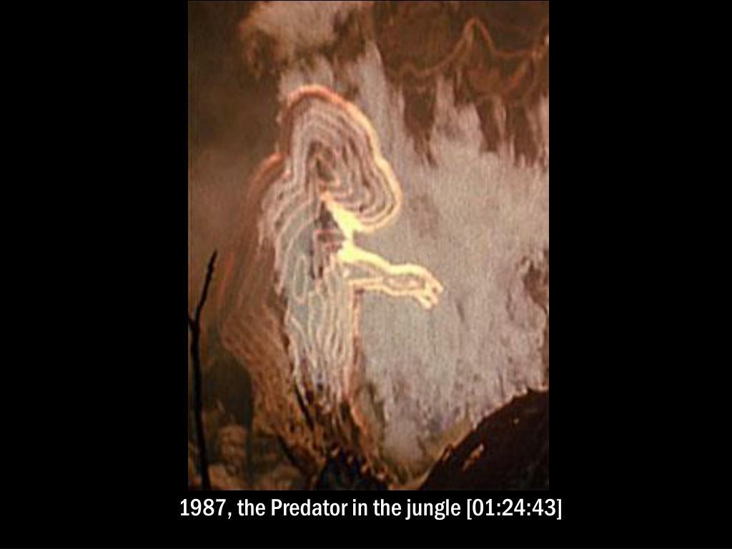 1987, the Predator in the jungle [01:24:43]
