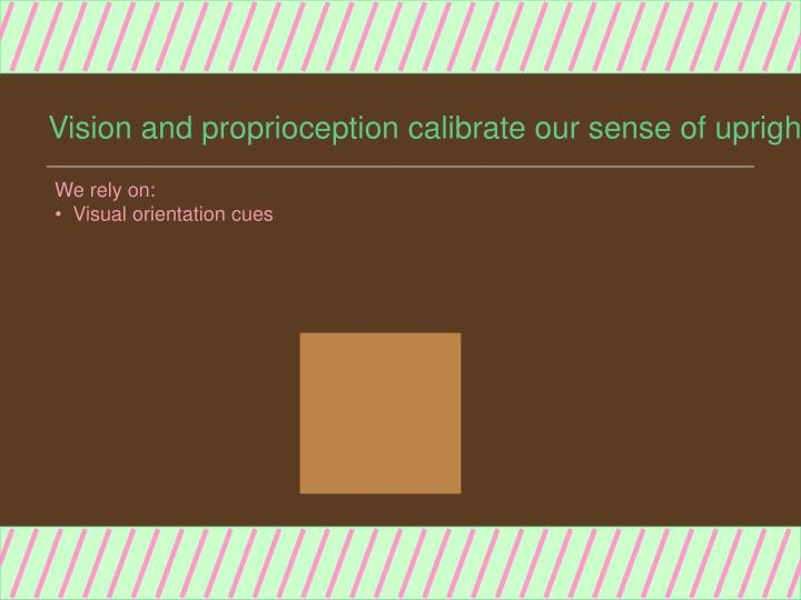 Vision and proprioception calibrate our sense of upright3
