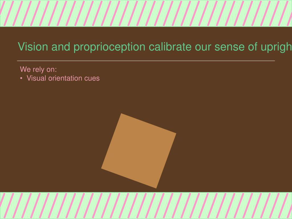 Vision and proprioception calibrate our sense of upright.
