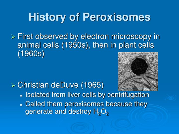 History of peroxisomes