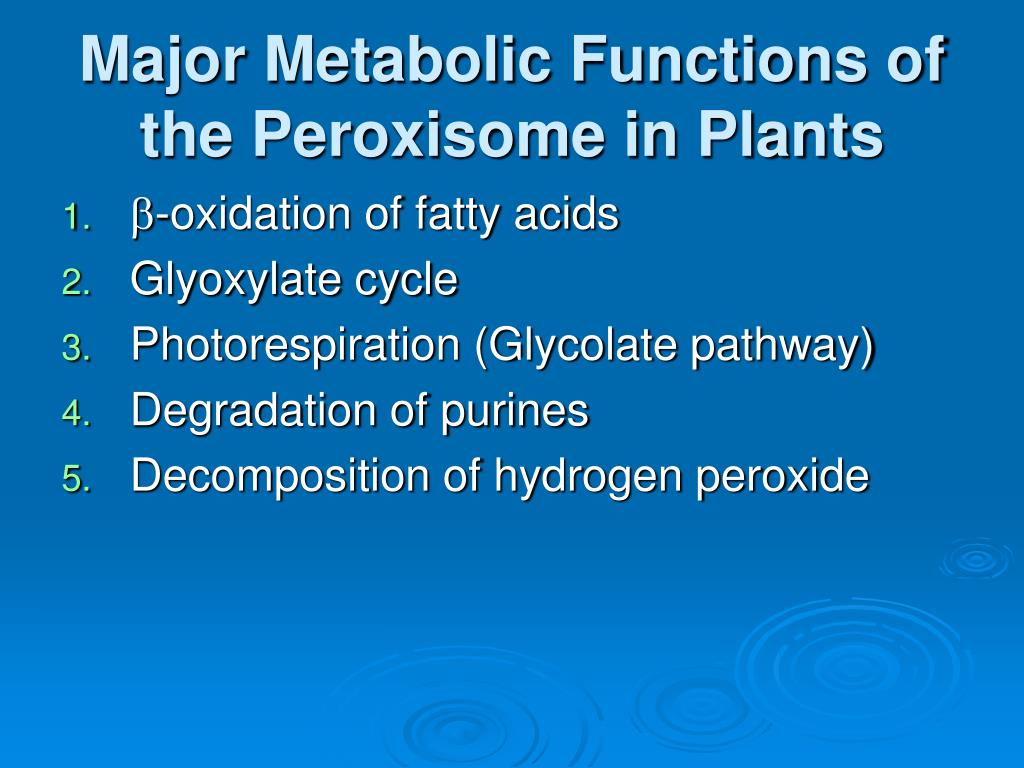 Major Metabolic Functions of the Peroxisome in Plants