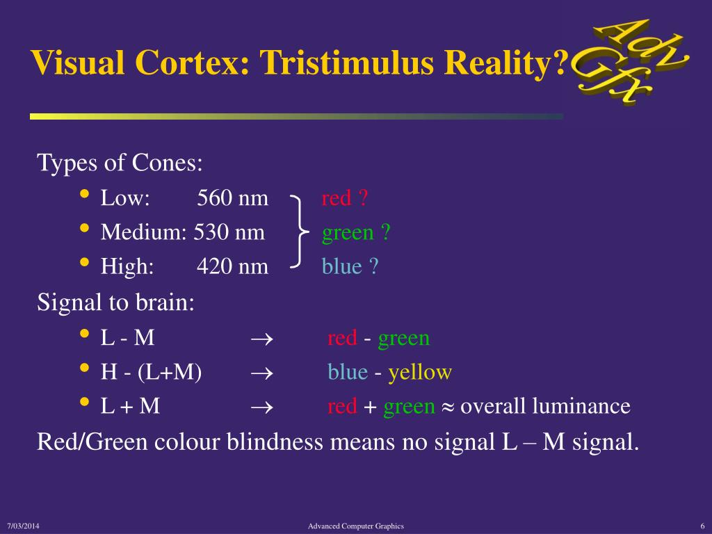 Visual Cortex: Tristimulus Reality?
