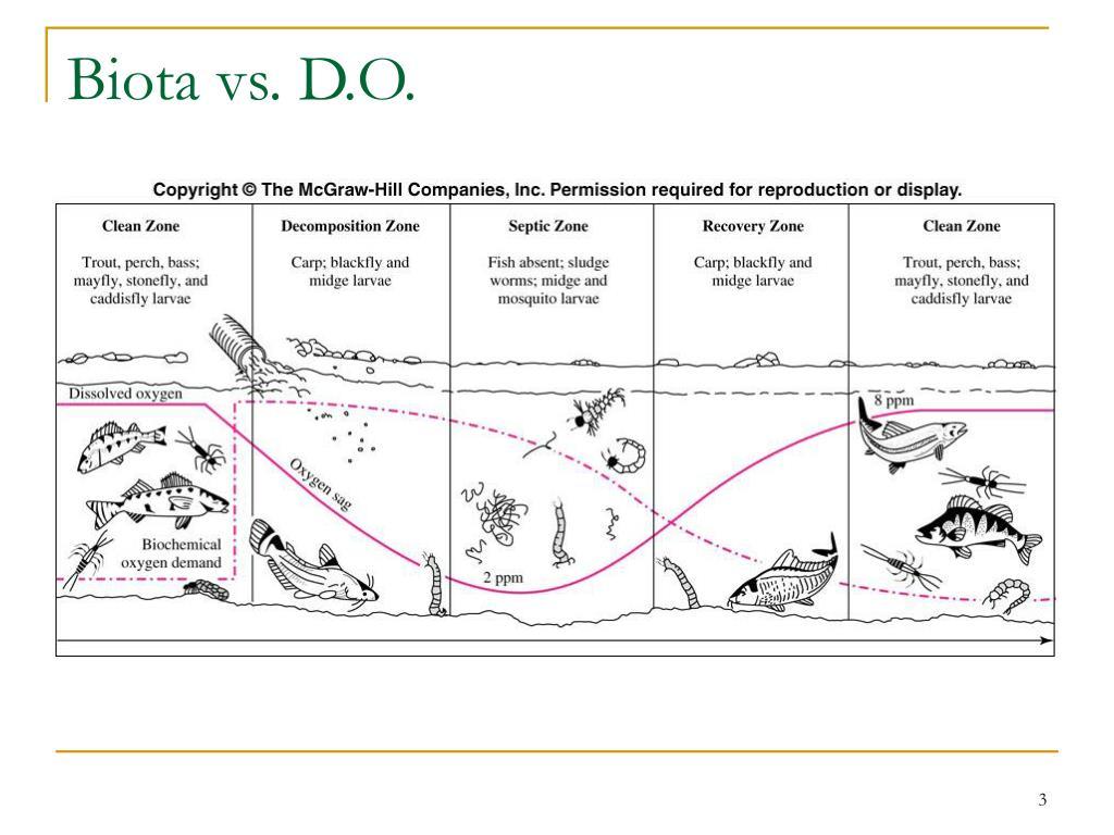 Biota vs. D.O.