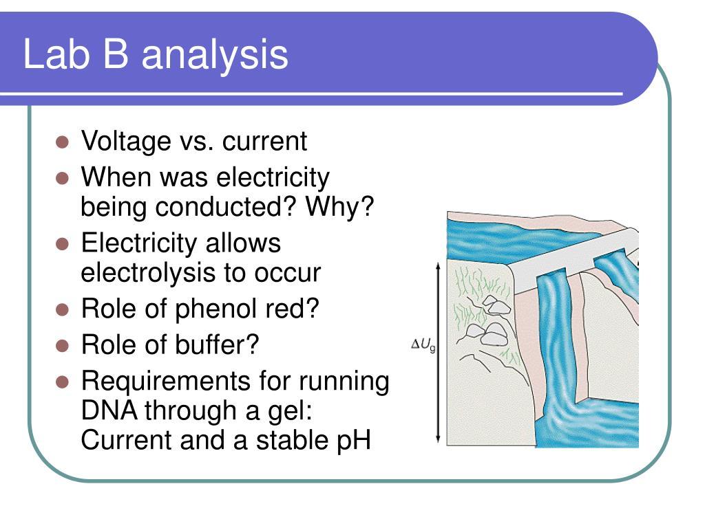 Lab B analysis