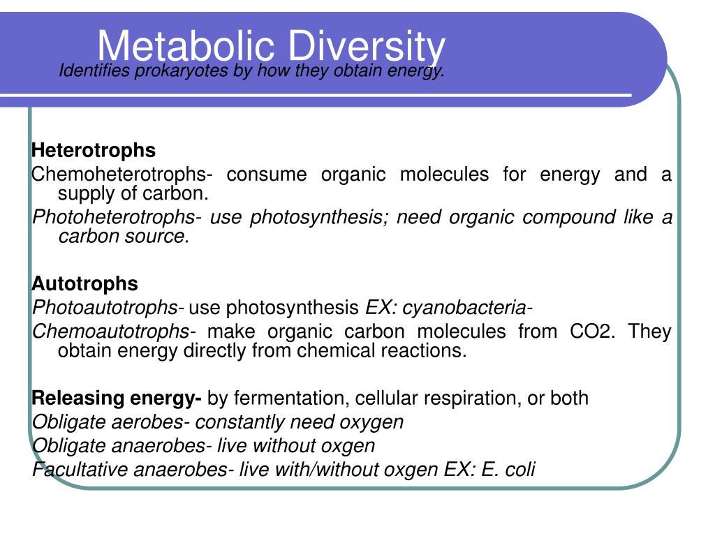 Metabolic Diversity