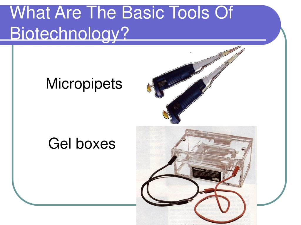 What Are The Basic Tools Of Biotechnology?