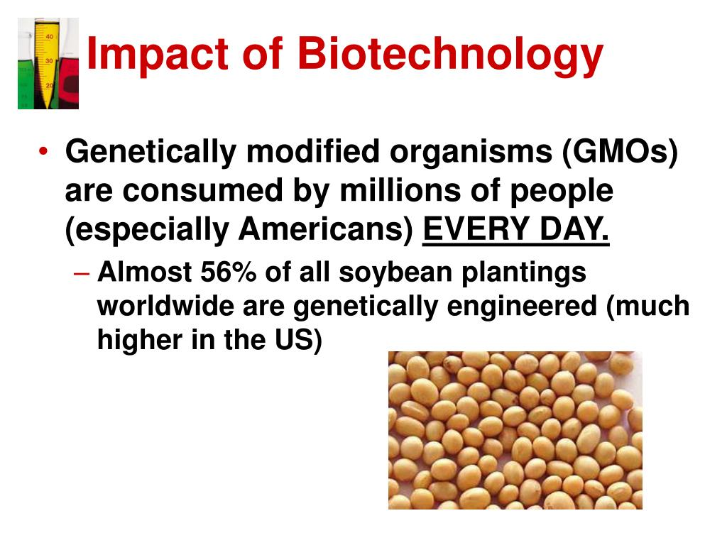 an analysis of the effects of genetically modified foods on biotechnology Benefits and risks associated with genetically modified food products marta evaluate effects linked to the consumption of food produced with the application of genetic falk mc, chassy bm, harlander sk, hoban tj iv, mcgloughlin mn, akhlaghi ar food biotechnology: benefits and.