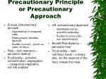 precautionary principle or precautionary approach