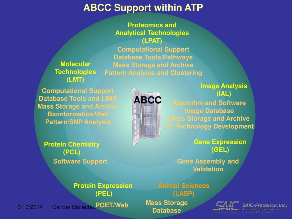 ABCC Support within ATP