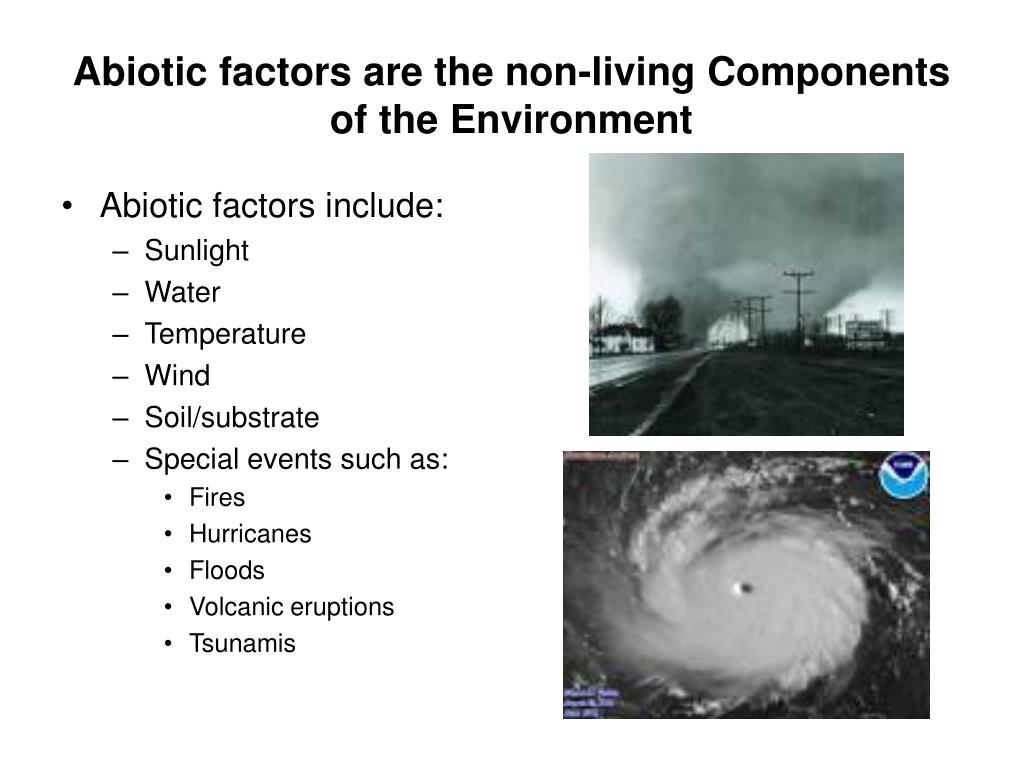 Abiotic factors are the non-living Components of the Environment