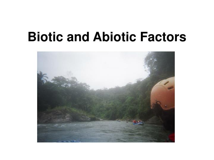 Biotic and abiotic factors l.jpg