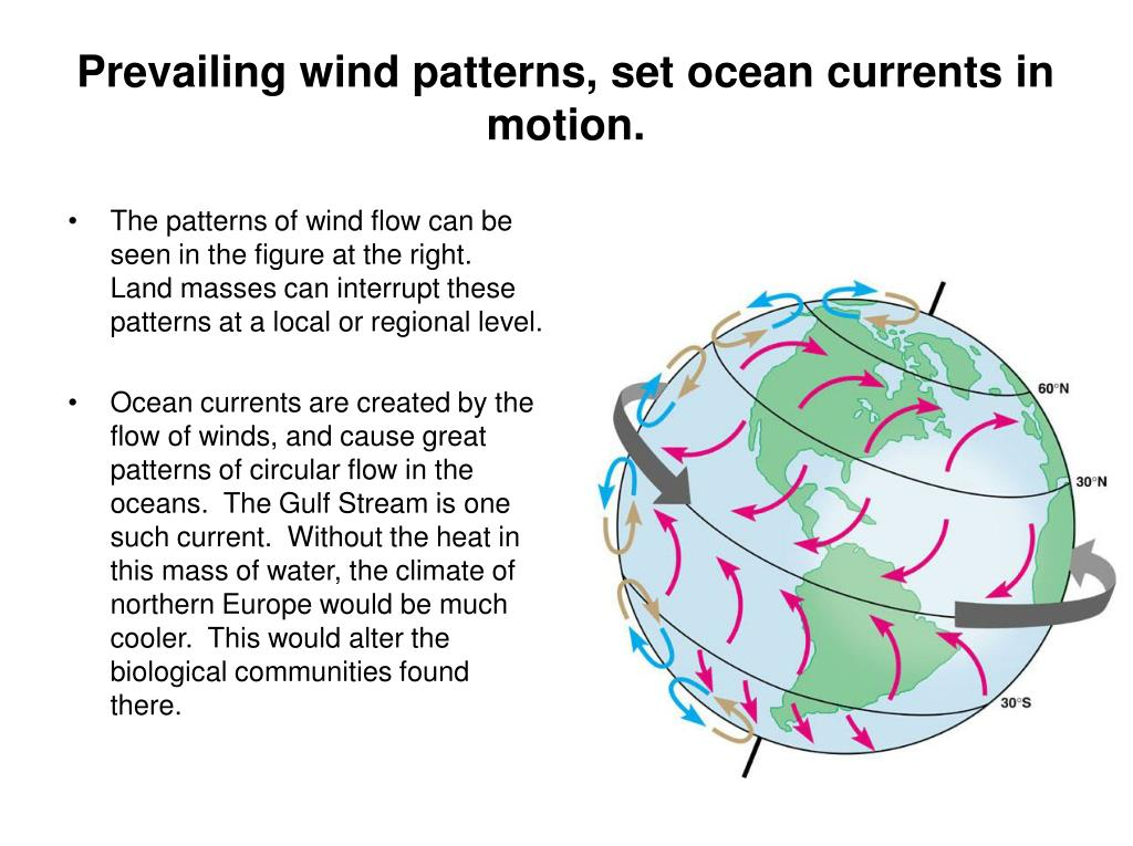 Prevailing wind patterns, set ocean currents in motion.