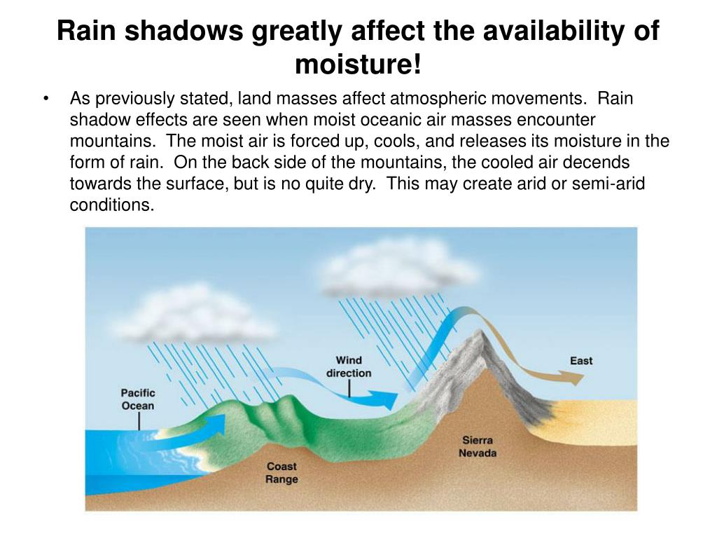 Rain shadows greatly affect the availability of moisture!