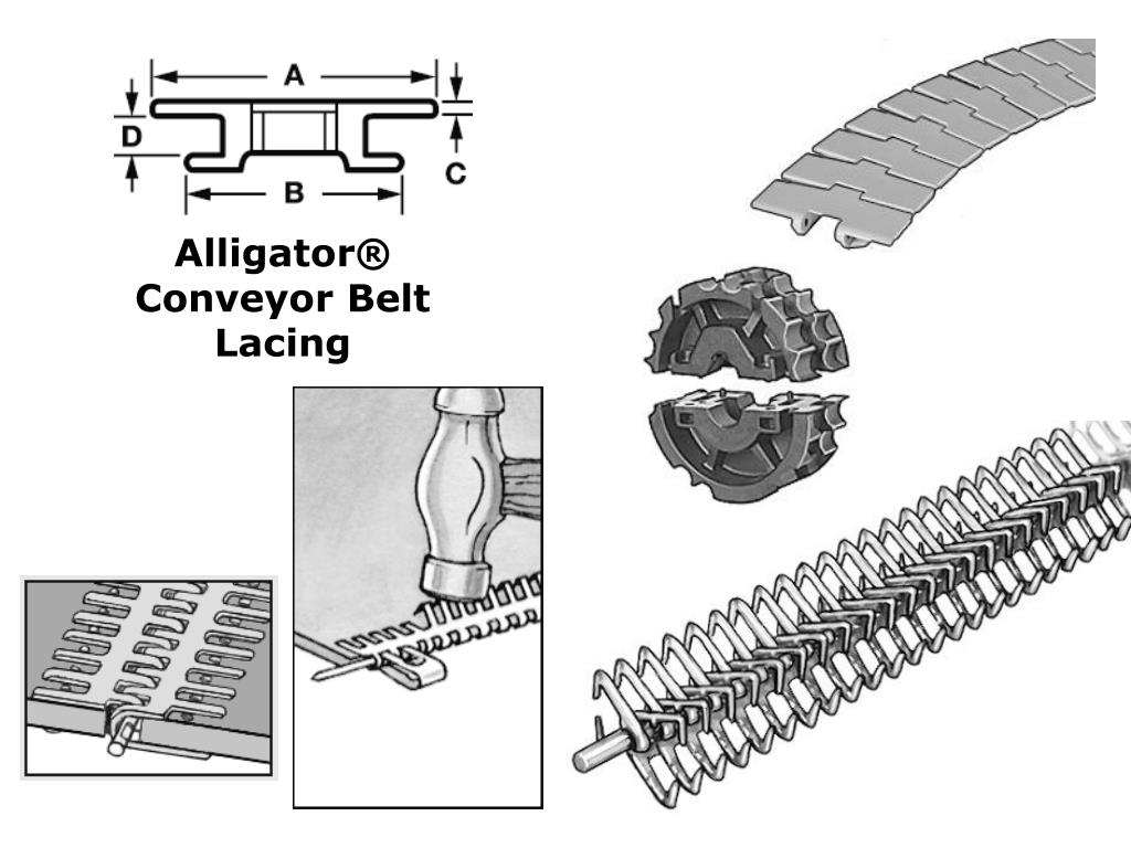 Alligator® Conveyor Belt Lacing
