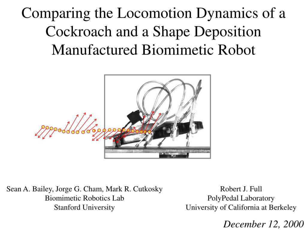Comparing the Locomotion Dynamics of a Cockroach and a Shape Deposition Manufactured Biomimetic Robot