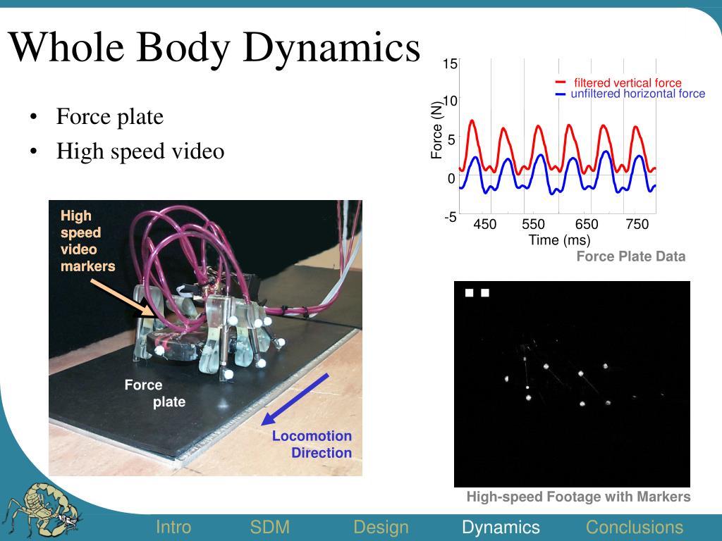 Whole Body Dynamics